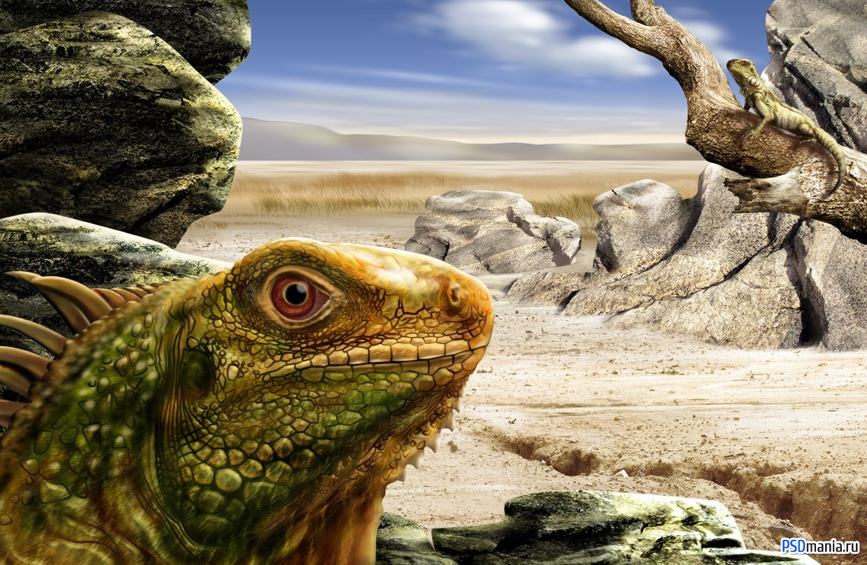 Featured psd lizards layered material